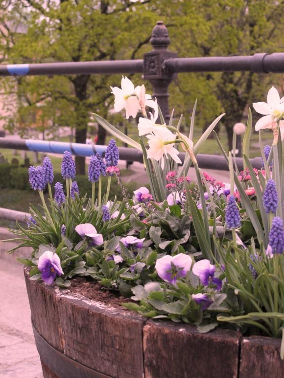 Blomsterprogram Stockholm 2013